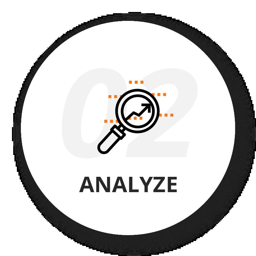 2. Analyze